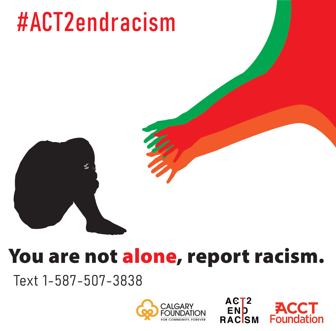 report racism_poster2